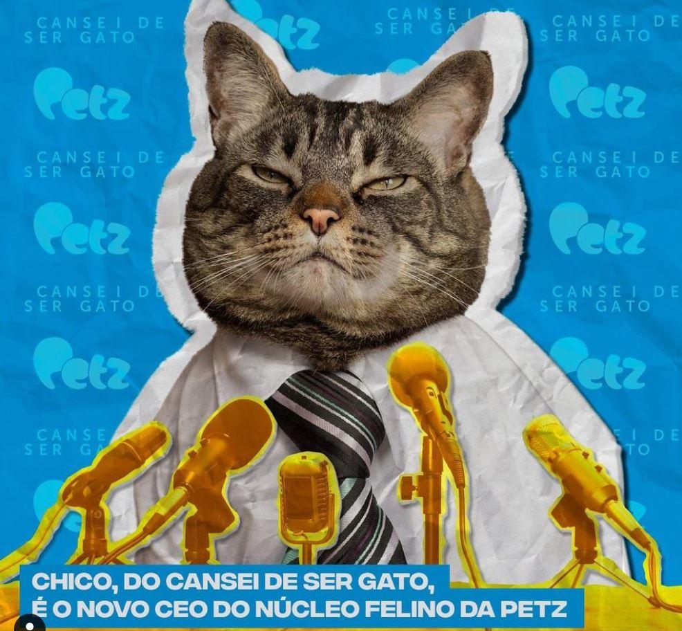 invistaja.info - Petz anuncia compra da plataforma Cansei de Ser Gato
